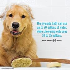 water-saving tip 1