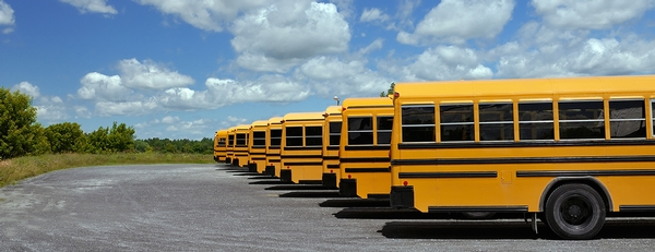 5 tips for sharing the road with school buses