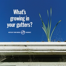 Gutter maintenance: KFB Insurance blog