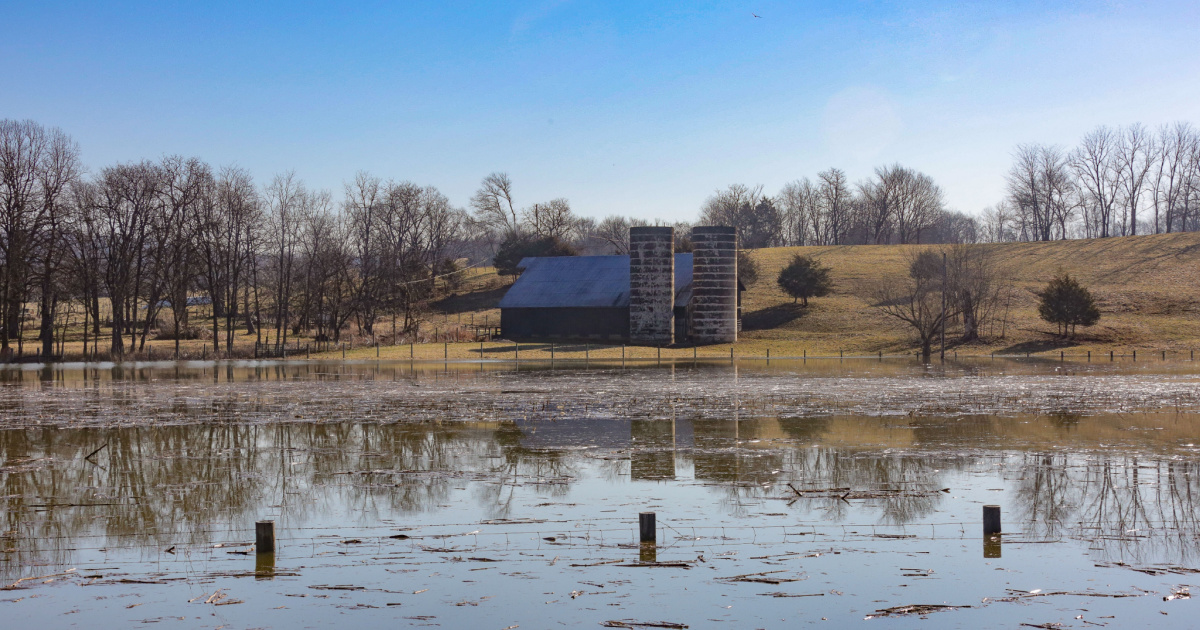 The Spring Season: What Effect Will Late Winter Storms Have on Kentucky Agriculture?