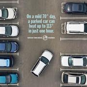 car heat stroke prevention tip 1.jpg
