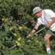 Glean Kentucky Making a Difference in the Battle Against Hunger