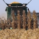 Harvest 2021Continues: The Latest Crop Update