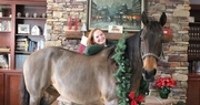 Assisted Living Facility Residents get a Holiday Visit  from an Unusual Guest