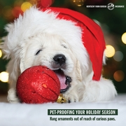 how to pet proof your holiday decor 2.jpg