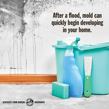 Tip for recovering after a flood