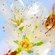 Kentucky Art Contest Increases Pollinator Awareness