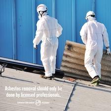 asbestos 4.jpg